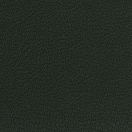 1905 verde sagitta